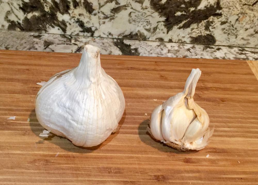 Elephant Garlic Vs. Regular Garlic